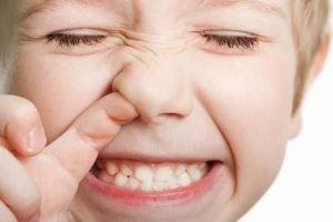 Thực đơn cho trẻ chảy máu cam – Nên ăn gì và kiêng ăn gì