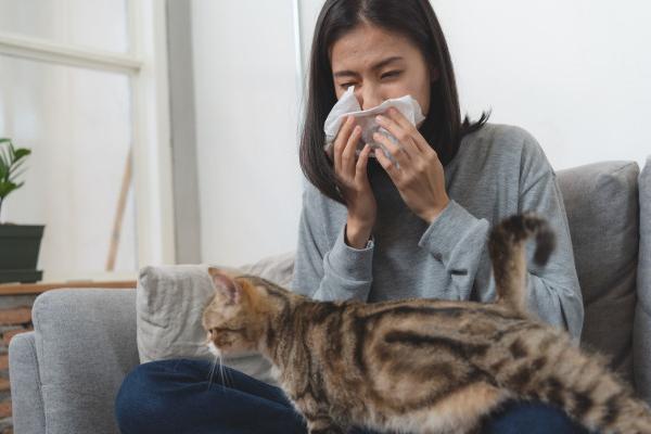 người bệnh hen suyễn tránh tiếp xúc với vật nuôi