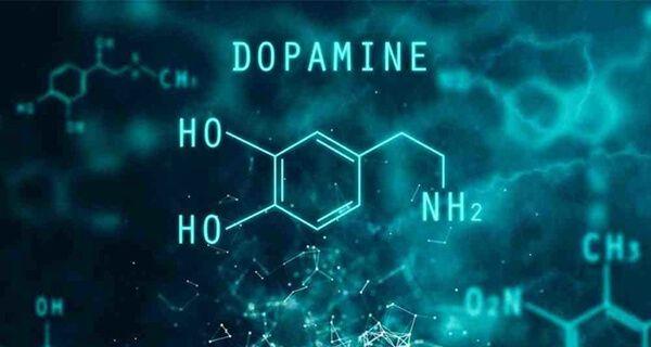 Chất chủ vận dopamine giúp trị bệnh parkinson