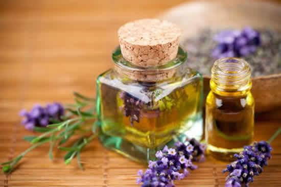 tinh dầu đinh hương trị hen suyễn