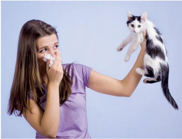 bệnh nhân hen tránh tiếp xúc với vật nuôi