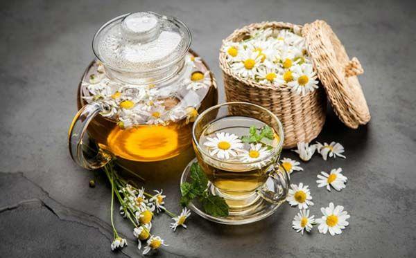 Trà hoa cúc cải thiện chứng mất ngủ