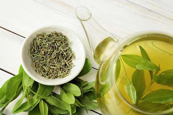 Uống trà xanh có thể gây mất ngủ