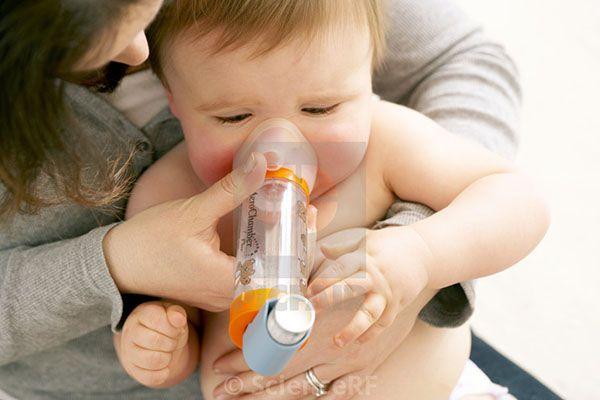 Hen phế quản bội nhiễm có thể gây ra suy hô hấp