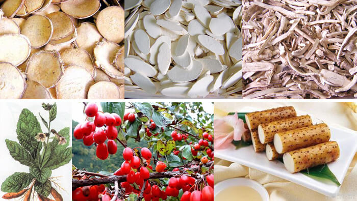 Bài thuốc Lục Vị tiên dược chữa táo bón mãn tính